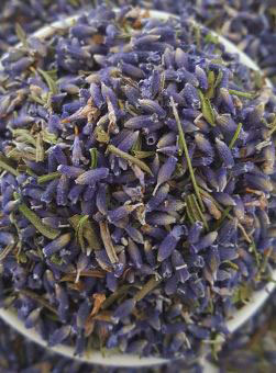 prepare the Lavender Seed